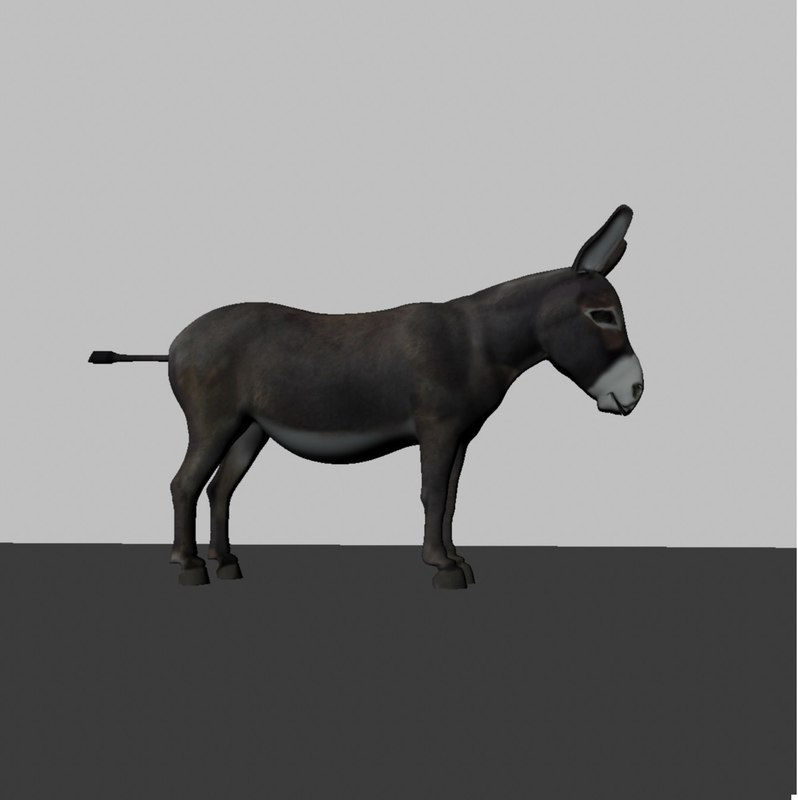 3d donkey animation