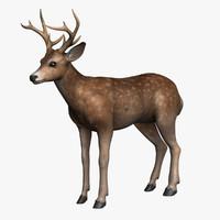model deer horns