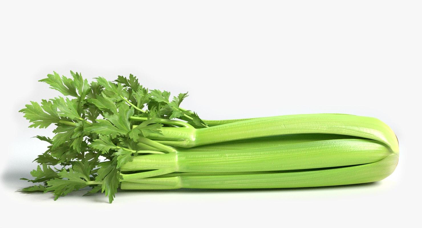 celery 3ds