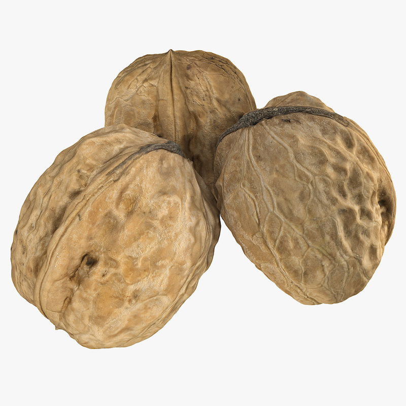 walnut scan 3d 3ds