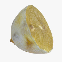 3d model arid fruit