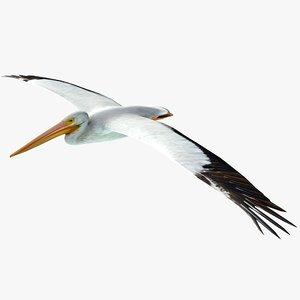 pelican flying 3ds