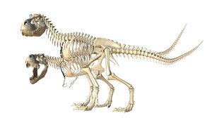 x t tyrannosaur