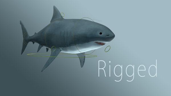 3d max shark