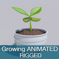 animation sprout 3d model