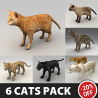 6 Rigged Cats Pack