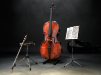 Cello Stage Scene