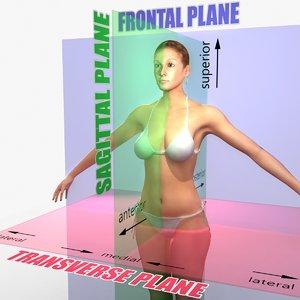 maya planes body female rigged