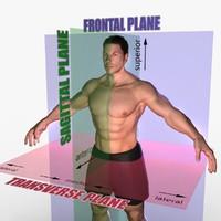 3d planes body male