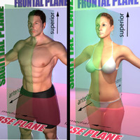 male female combo planes 3d ma