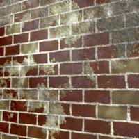Red Worn Bricks 3