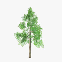 tree 09 max