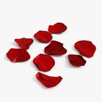 3d model rose petals