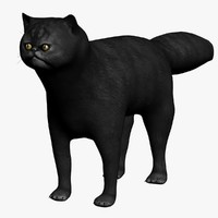 3ds max black cat