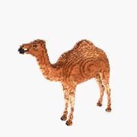 Voxel Camel