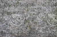 Stone(lichen/moss) Texture - High Res