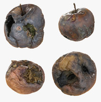 3d rotten decayed apples model