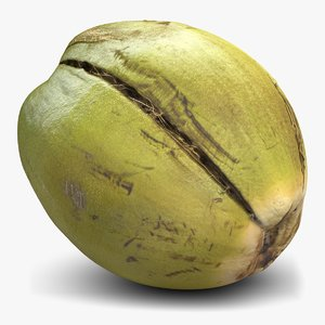 3ds green coconut 2