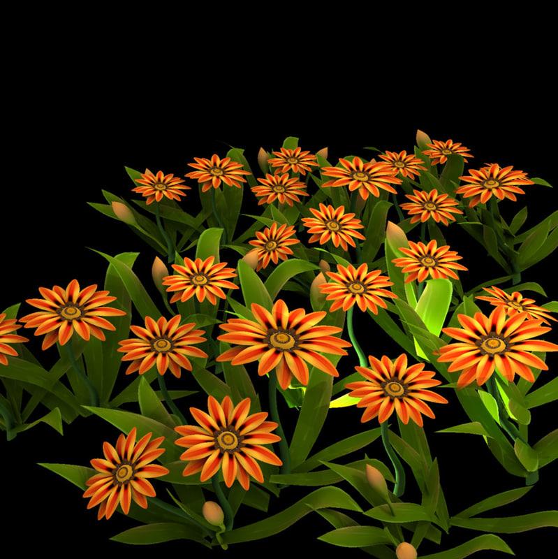 flower gazania garden 3d model