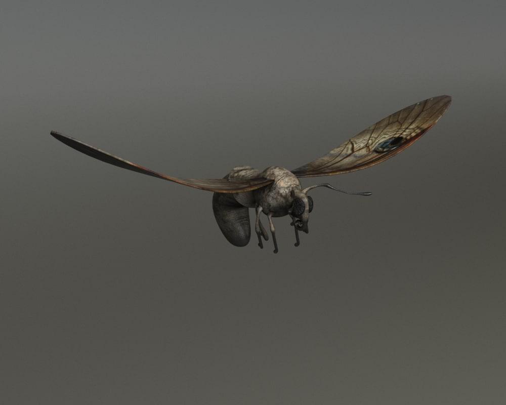 moth - bone rig 3d max