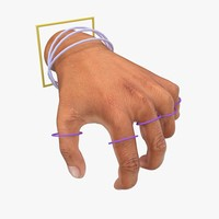 3ds max hand rigged poses skin