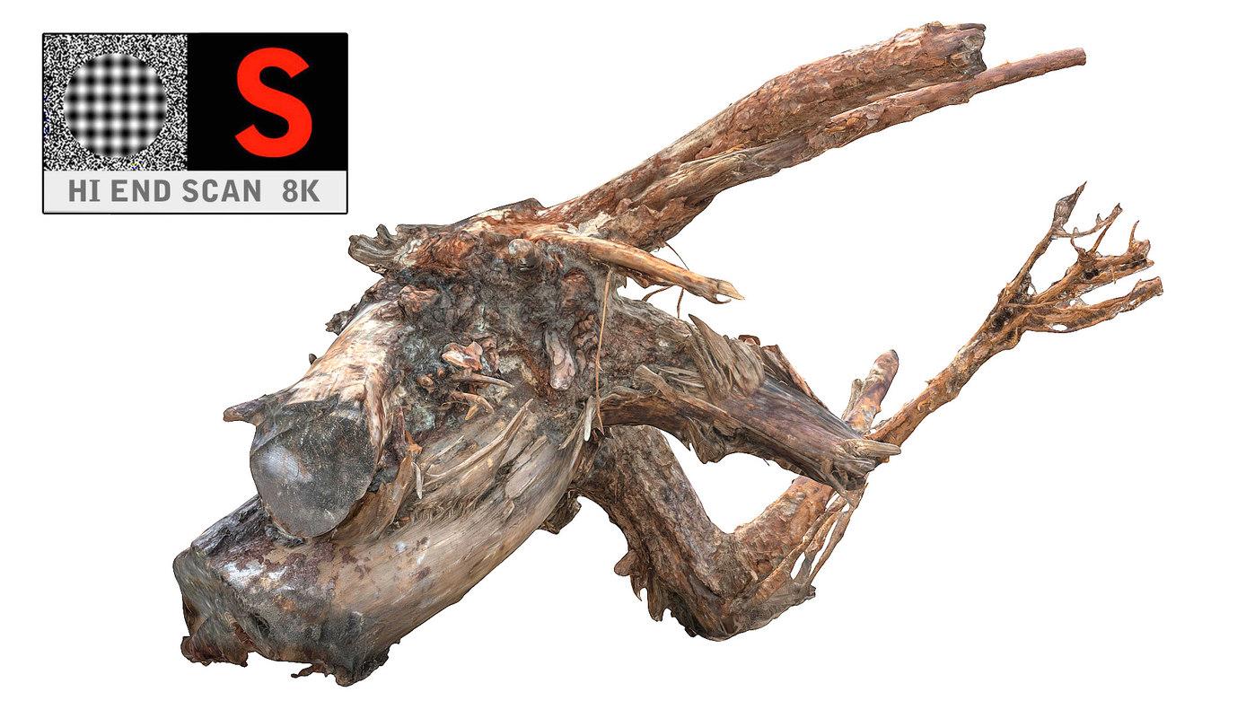 3d model root stump 8k