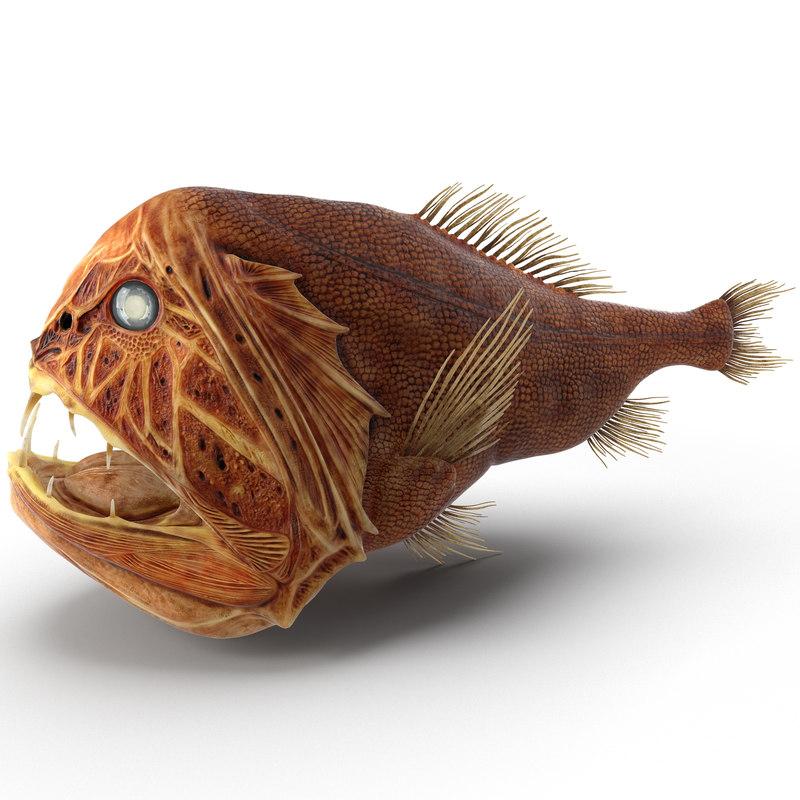 Fangtooth_Fish_3d_model_01.jpg