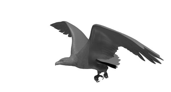 maya eagle