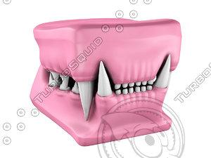 3d cat teeth cast model