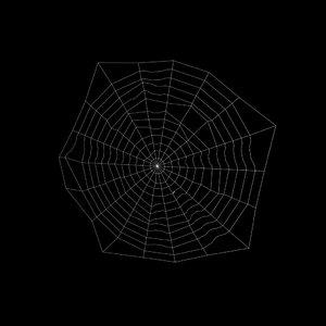 3d model spider web