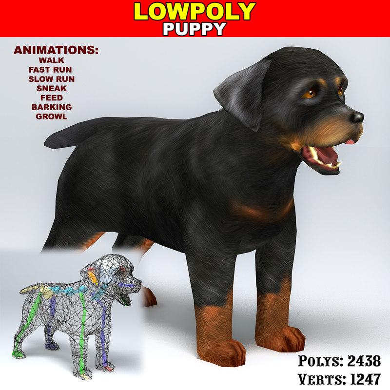 rottweiler puppy max