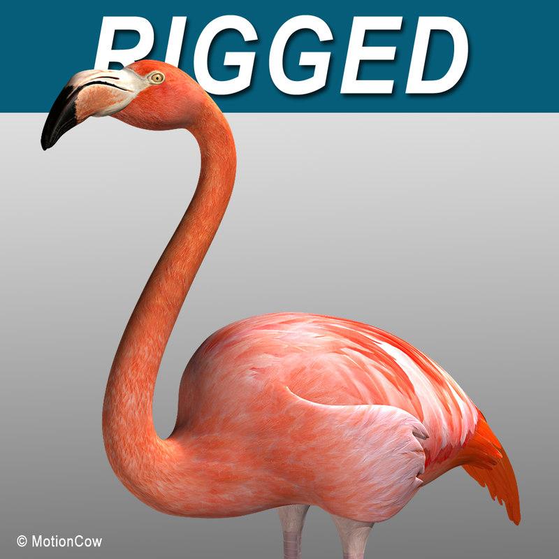 max realistic flamingo