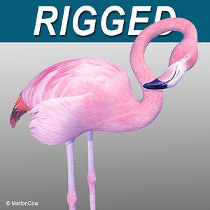3d realistic pink flamingo model