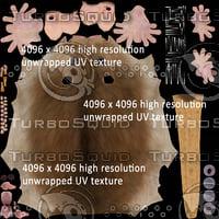 3d brown rat model