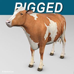 3ds max ayrshire cow