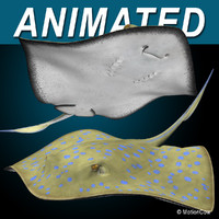 realistic bluespotted stingray 3d model
