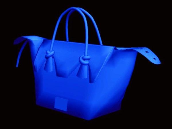 max hand bag