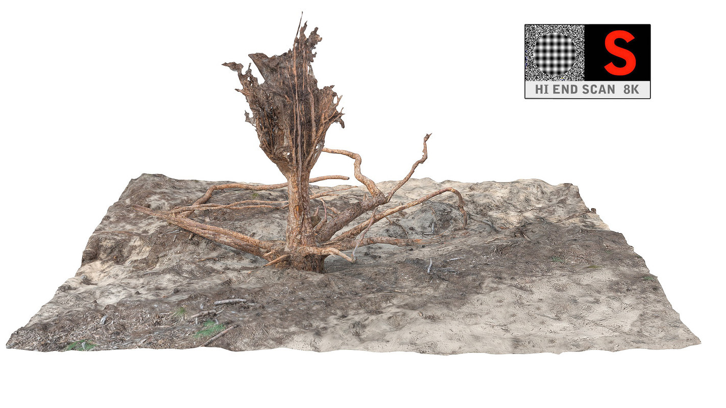 3ds max desert roots