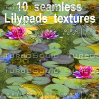 Lilypads Collection 1