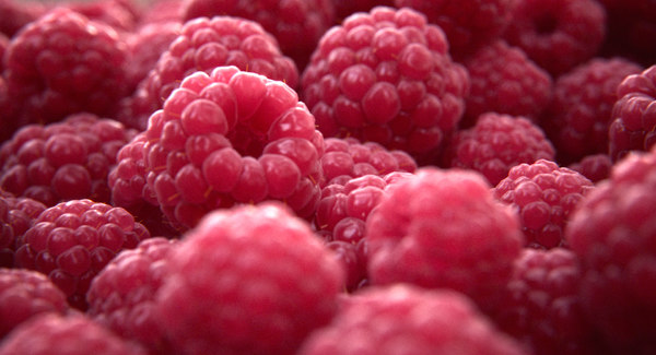 raspberry fruit 3d model