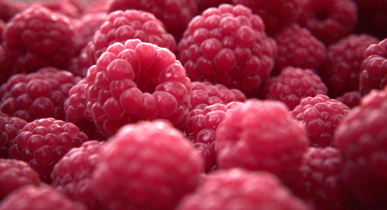 raspberry fruit 3d model