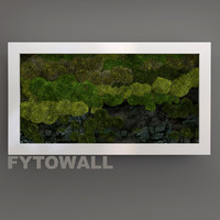 Fytowall with stone