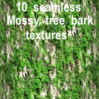 Mossy Tree Bark Collection 4