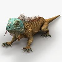 3d iguana lizard