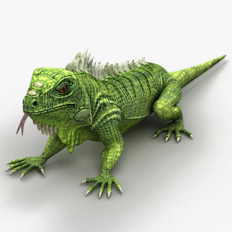 iguana lizard 3d max