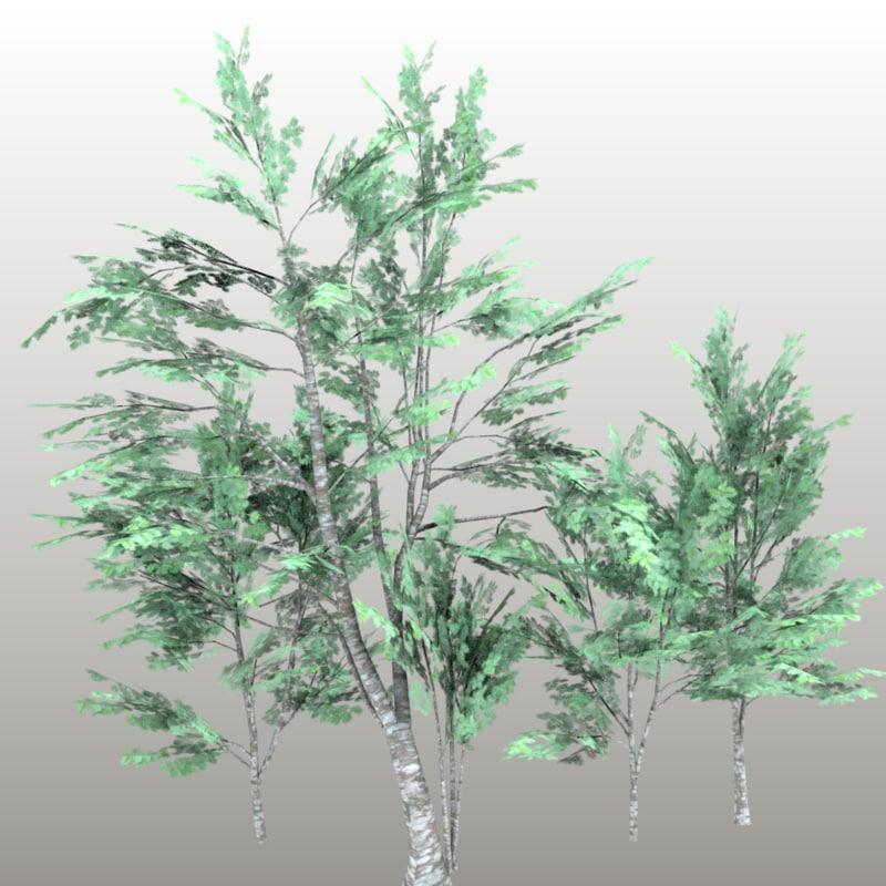 3d model sorbus rowan tree