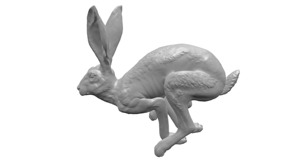 jackrabbit hare obj