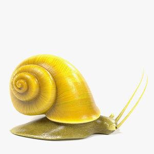 maya golden apple snail
