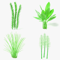 aquatic plants 3d 3ds