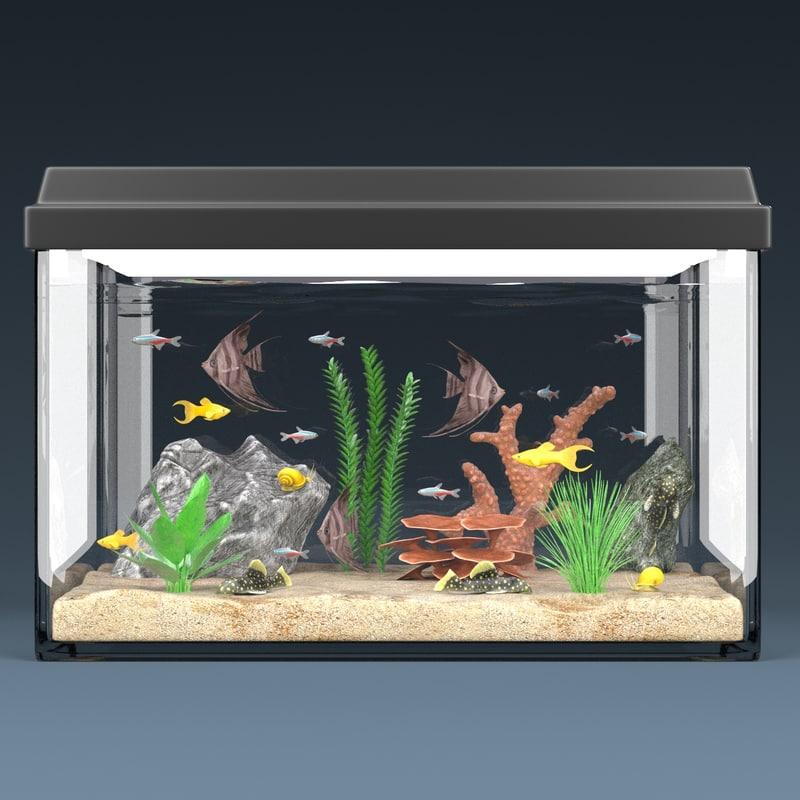 3d model aquarium equipped decorations